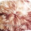 08 Peruvian baby alpaca pillow