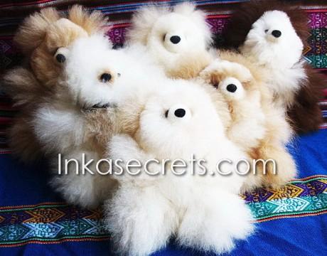 25 Baby alpaca teddy bear small