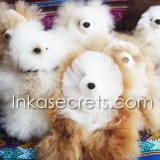 50 Baby alpaca teddy bear small