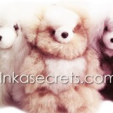 30 Baby alpaca bear & dog small