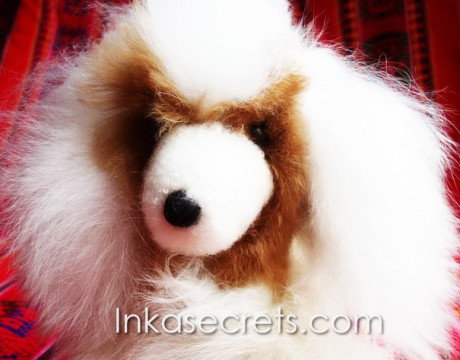 06 Baby alpaca fur dog small.